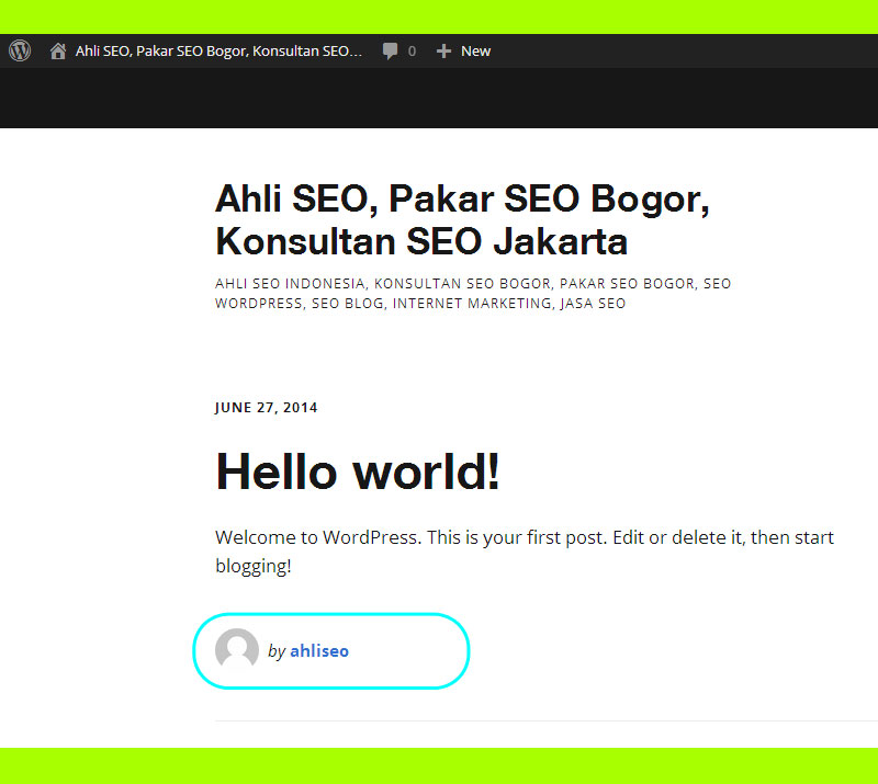 Bagaimana-cara-mengganti-display-name-di-wordpress-ahli-seo-aditya-nur-baskoro