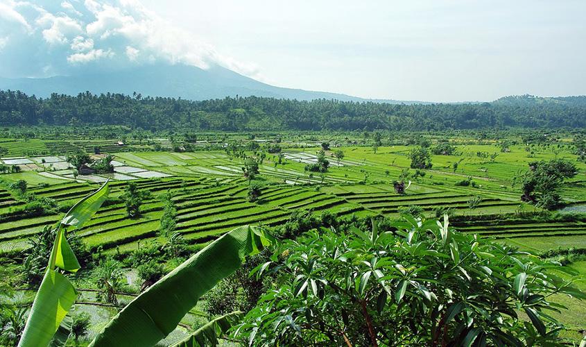 Gunung-Agung-Meletus,-Gunung-Agung-Erupsi,-Gunung-Agung-Bali,-Gunung-Agung-Terkini